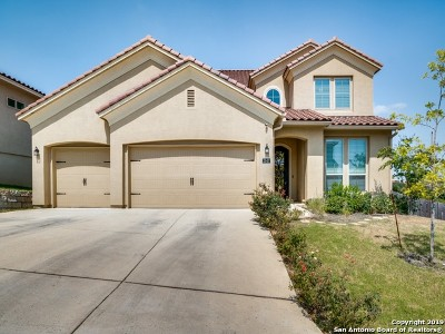 Single Family Home For Sale: 2947 Antique Bend