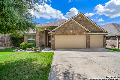 Helotes Single Family Home For Sale: 10728 Barnsford Ln