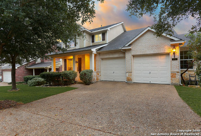 Stone Oak Single Family Home For Sale: 106 Enchanted Hill