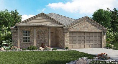 Cibolo TX Single Family Home New: $262,999