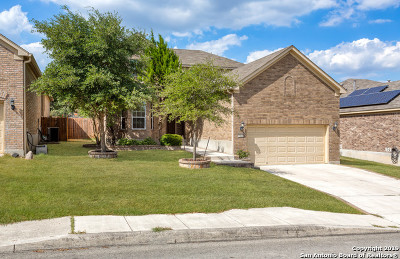 Alamo Ranch Single Family Home For Sale: 11831 Elijah Stapp