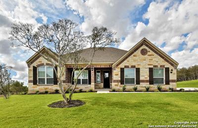 Medina County Single Family Home For Sale: 468 Texas Bend