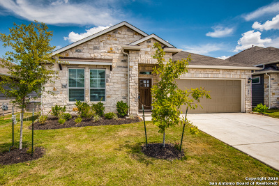 New Braunfels Single Family Home For Sale: 456 Agave Flats Dr