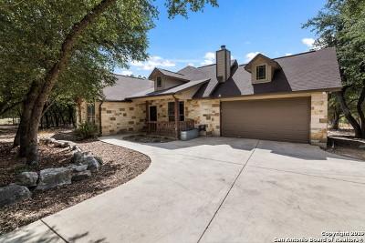 New Braunfels Single Family Home Active Option: 2434 Wegner Rd