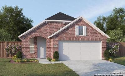New Braunfels Single Family Home For Sale: 2068 Cowan Drive