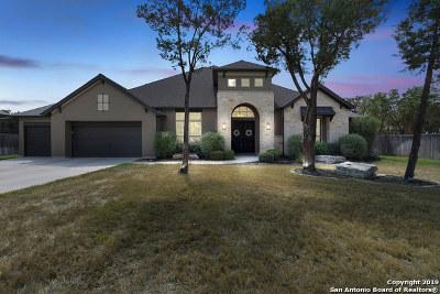 New Braunfels Single Family Home For Sale: 981 Wilderness Oaks