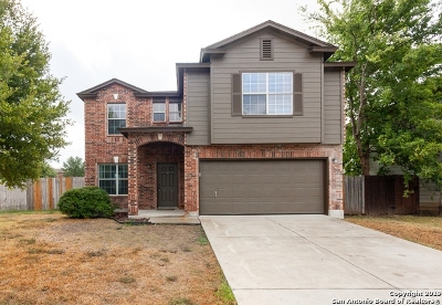 New Braunfels Single Family Home For Sale: 388 Copper Path Dr