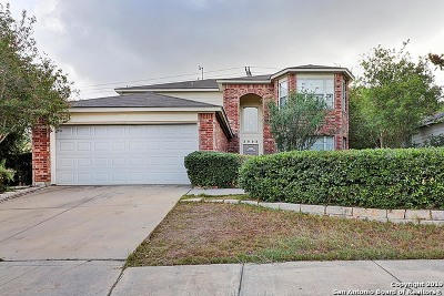 Schertz Single Family Home For Sale: 3908 Brook Hollow Dr