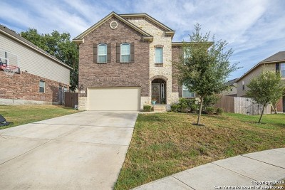 Cibolo Single Family Home New: 240 Comanche Trail