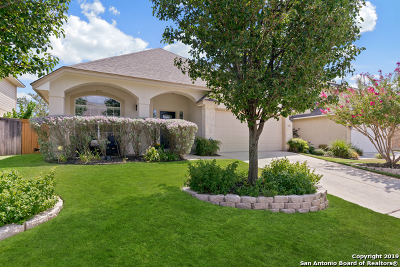 San Antonio Single Family Home New: 24534 Buck Creek
