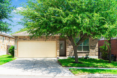 Alamo Ranch Single Family Home New: 12139 Harris Hawk