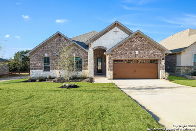 New Braunfels Single Family Home New: 229 Sigel Ave