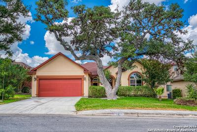 San Antonio Single Family Home New: 9411 Holly Pl