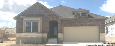 Live Oak Single Family Home New: 12425 Vista Rim
