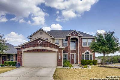 San Antonio Single Family Home New: 12102 Lamar Bridge