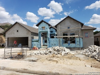 Bexar County Single Family Home New: 3841 Monteverde Way