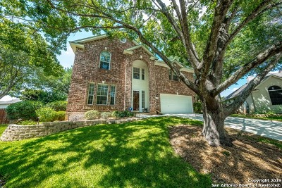 Cibolo Single Family Home New: 212 Peale Ct