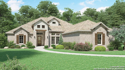 New Braunfels Single Family Home New: 2540 Angelrodt