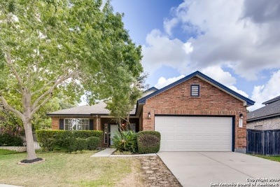 Helotes Single Family Home New: 9515 Tascate Dr