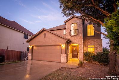 San Antonio Single Family Home New: 7607 Eagle Ledge