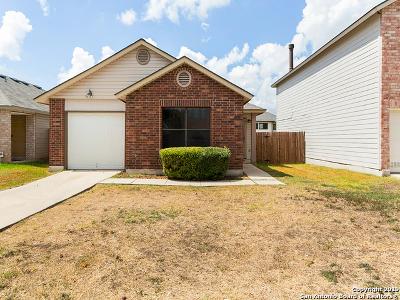 Converse Single Family Home New: 6821 Saharastone Dr