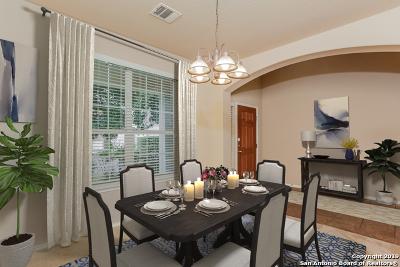 San Antonio Single Family Home New: 1127 Alpine Pond
