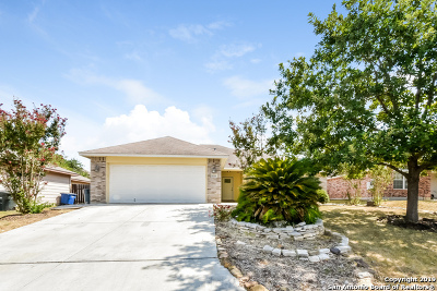 New Braunfels Single Family Home New: 2029 Bentwood Dr