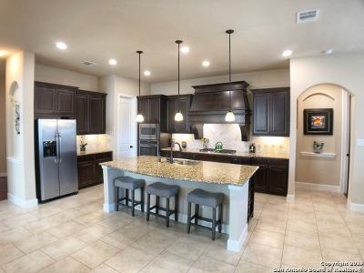 San Antonio Single Family Home New: 25823 Berberis