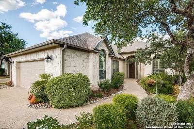 San Antonio Single Family Home New: 203 Garden Hill