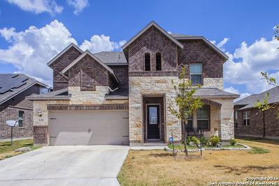 San Antonio Single Family Home New: 1630 Estonia Grey