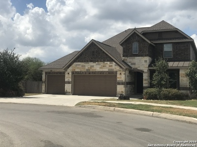 San Antonio Single Family Home New: 20203 Ashford Vista