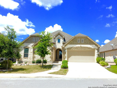 San Antonio Single Family Home New: 3935 Firebush