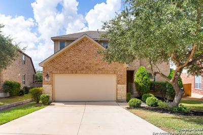 San Antonio Single Family Home New: 3111 Highline Trail