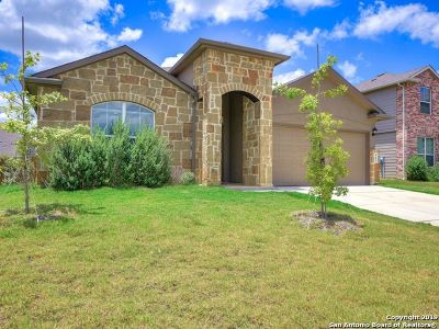 New Braunfels Single Family Home New: 463 Willow Arch