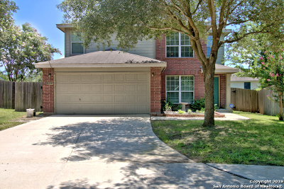 New Braunfels Single Family Home New: 203 Goliad Dr
