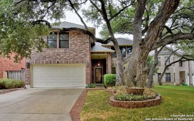 San Antonio Single Family Home New: 16414 Durango Creek Dr