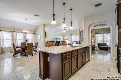 San Antonio Single Family Home New: 3607 Pinnacle Dr