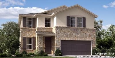 San Antonio Single Family Home New: 6634 Newell Farm