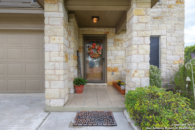 New Braunfels Single Family Home New: 203 Creekview Way
