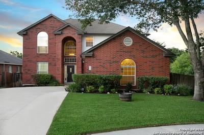 San Antonio Single Family Home New: 21106 Santa Lucia