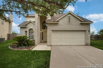 Comal County Single Family Home New: 315 Meadow Park