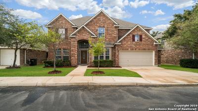 San Antonio Single Family Home New: 2510 Trinity Pass