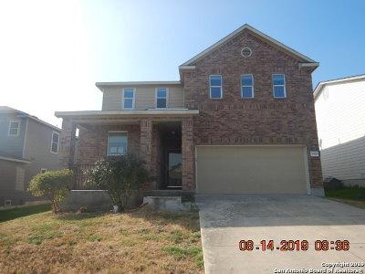 San Antonio Single Family Home New: 7906 Horse Holw