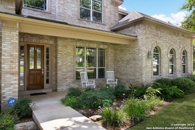 Bexar County Single Family Home New: 22223 Roan Forest