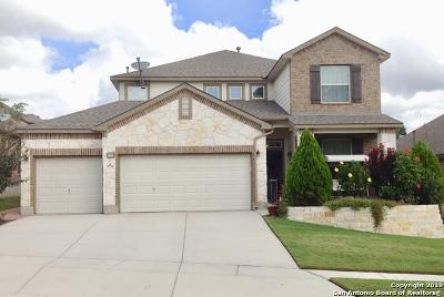 San Antonio Single Family Home New: 3731 Brittany Oaks