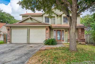 Single Family Home New: 13923 Crooked Hollow Dr