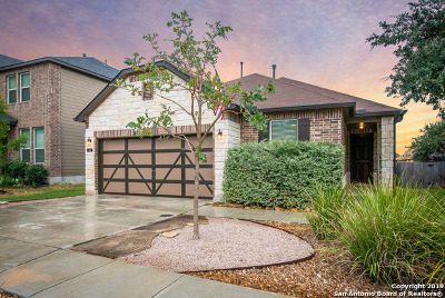 Boerne Single Family Home New: 133 Cactus Flower
