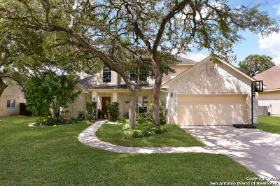 Boerne Single Family Home New: 210 English Oaks Circle