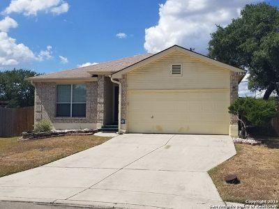 San Antonio Single Family Home New: 10739 Cat Mtn