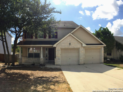 San Marcos Single Family Home New: 2047 Lisa Ln